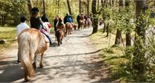 Pony ride at Center Parcs Bispinger Heide